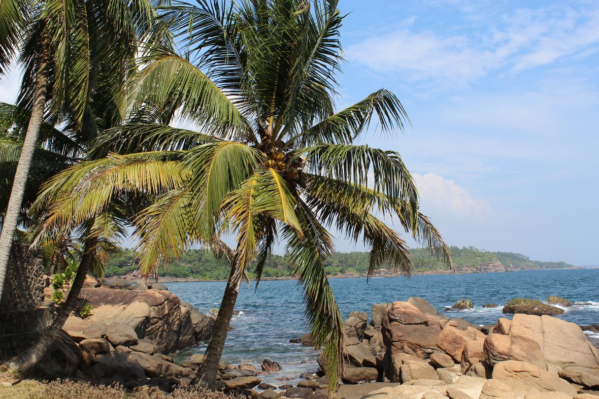 lilytoutsourire - 2 semaines de rêve au sri lanka
