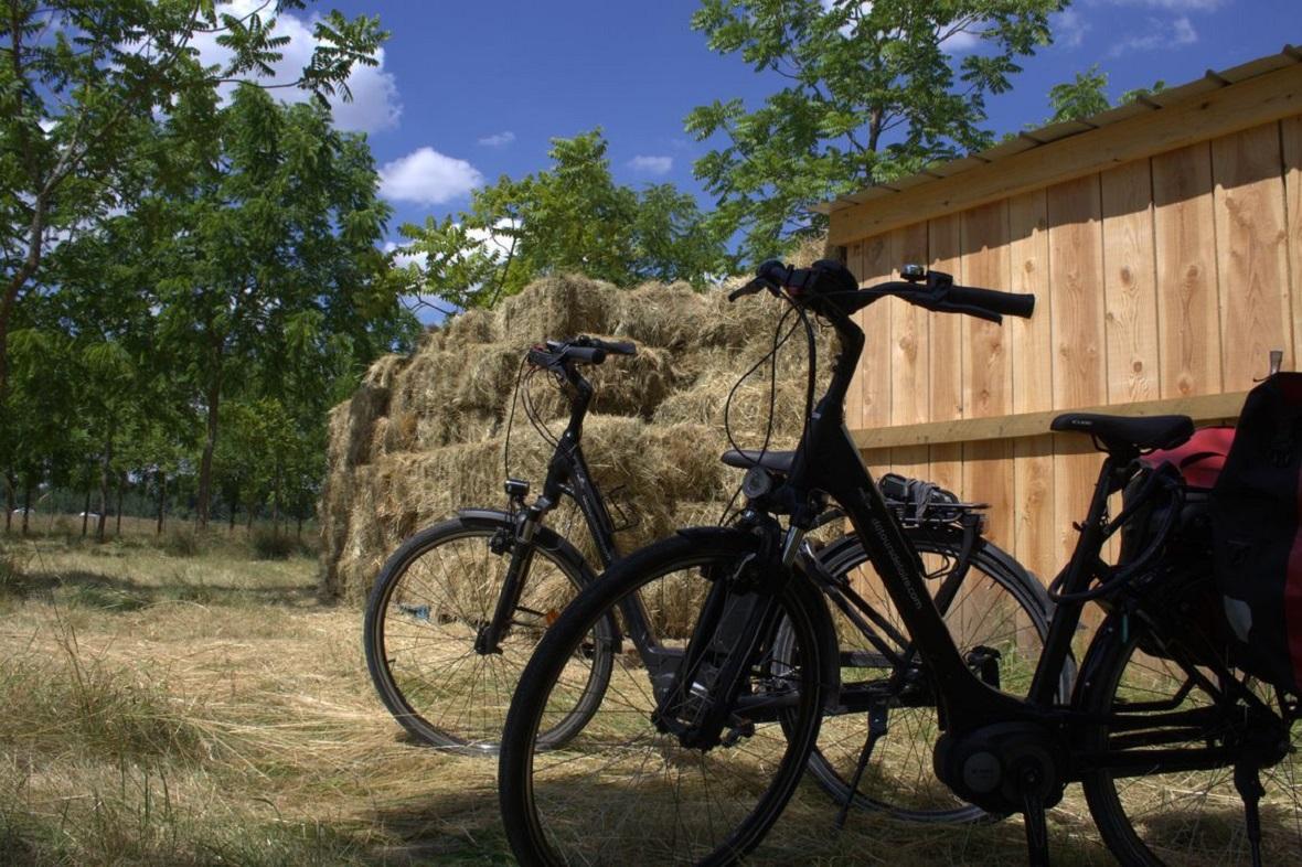 lilytoutsourire - la loire en vélo