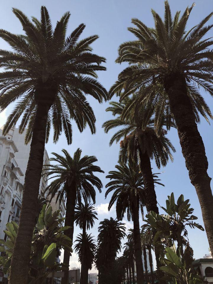 citytrip à Casablanca