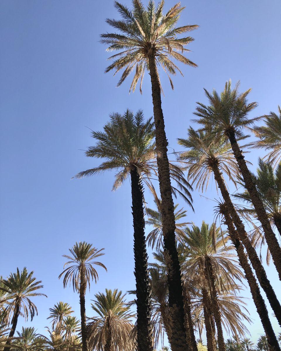 le Maroc en van- Tinghir