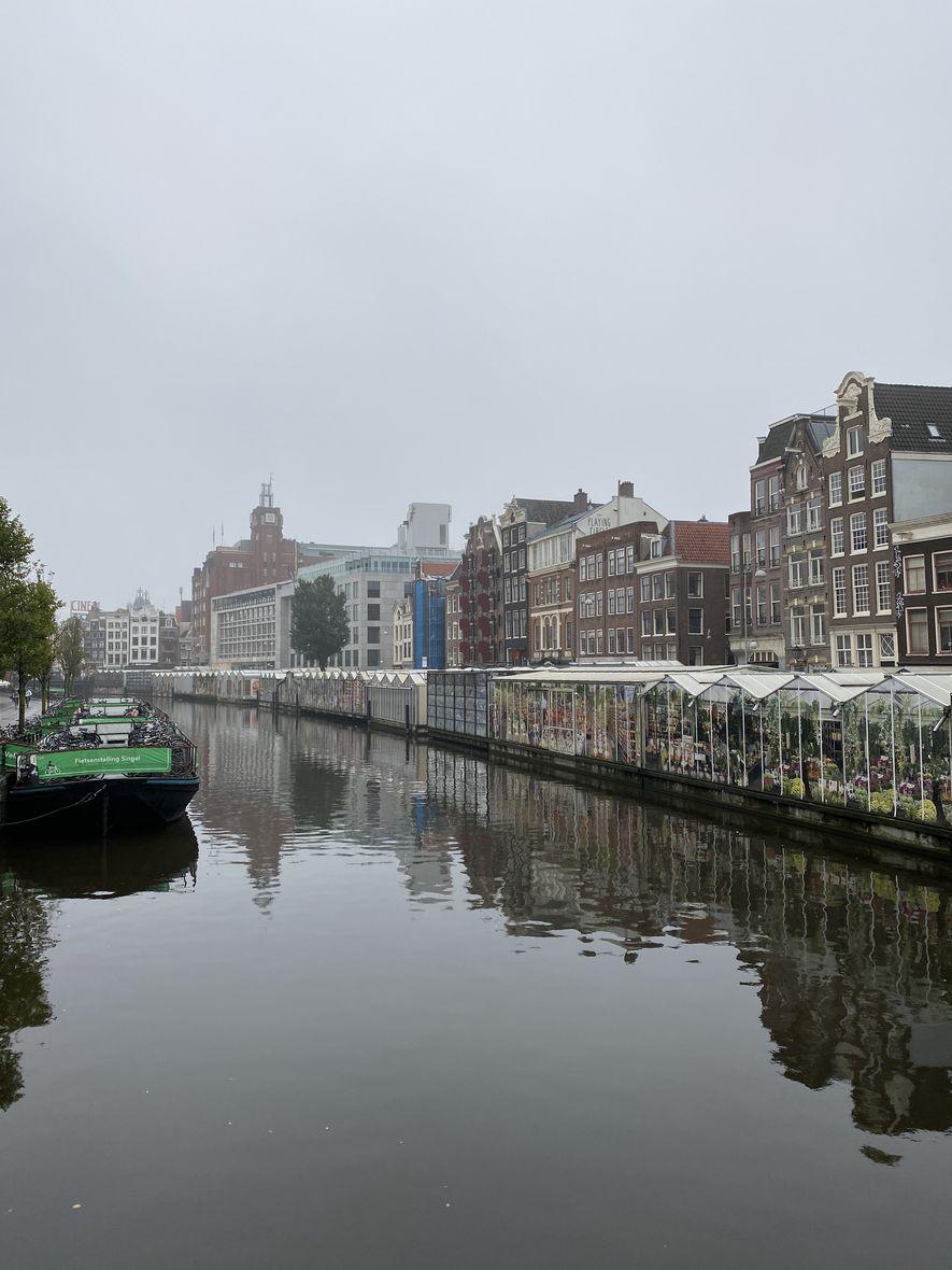 Marché aux fleurs Amsterdam (1)